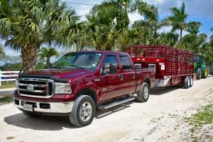 Pinellas County Truck Detailing Services pickup 3247624 1920 300x200